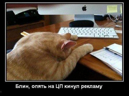 """Бригадирская """"Мурзилка"""""""